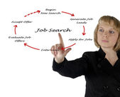 Diagram of job search — Stock Photo