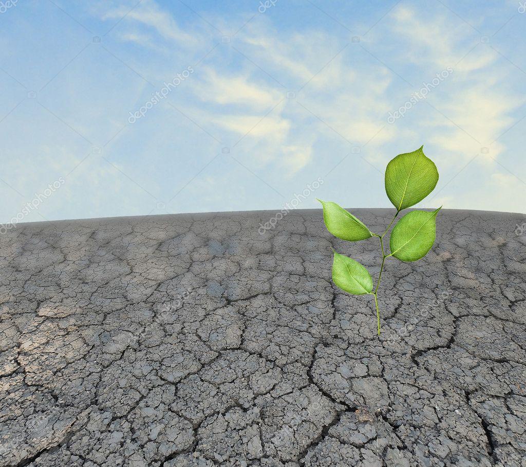 download Vermarktung industrieller Dienstleistungen: Strategien, Prozesse, Strukturen