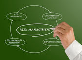 Diagram of risk management — 图库照片