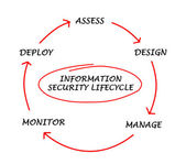 Diagram of information security lifecycle — Stock Photo