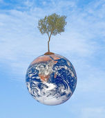 Planet earth as symbol of nature conservation — Stock Photo