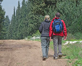 Couple touring forest at Israel — Stock Photo