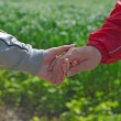 Man and woman handshaking — Stock Photo #9249718