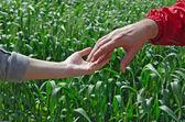 Metoda handshaking muž a žena — Stock fotografie