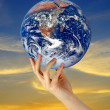 Planet earth as symbol of nature conservation.Elements of this i — Stock Photo #9266967