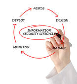 Diagram of information security lifecycle — Stockfoto
