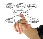 Presentation of insurance — Foto Stock