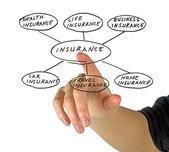 保険のプレゼンテーション — ストック写真
