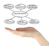 Presentation of insurance — Stock Photo