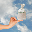 Bag with inheritance — Stock Photo #9400933