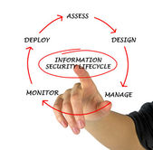 Information security lifecycle — Foto Stock