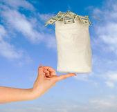 Bag with money — Stock Photo