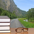 Book and eyeglasses — Stock Photo #9636260
