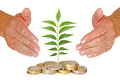 Hands protecting seedling growing from coins — Stock Photo