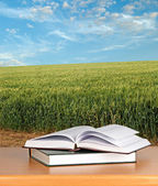 Boeken op Bureau — Stockfoto