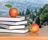 Açık kitap üzerine kırmızı elma — Stok fotoğraf