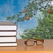 Stock Photo: Eyeglasses and books