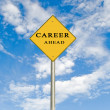 Road sign to career — Stock Photo #9669656