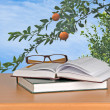 Eyeglasses and books — Stock Photo