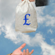 Bag with money — Stock Photo