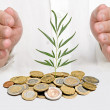 Stock Photo: Hands protecting tree growing from pile of coins