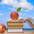 Stock Photo: Red apples and open book