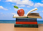 Red apples and open book — Stockfoto