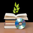 Tree growing from open book — Stock fotografie