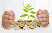 Palms protecting a tree growing from pile of coins — Stock Photo