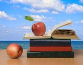 Czerwone jabłka i otwarta książka — Zdjęcie stockowe
