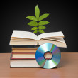 Tree growing from open book — Foto de Stock