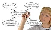 схема решения безопасности для электронной коммерции — Стоковое фото
