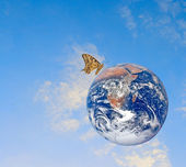 Butterfly on planet Earth.Elements of this image furnished by NA — Stock Photo