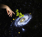 Plant at center of galaxy.Elements of this image furnished by NA — Stock Photo
