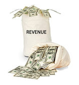 Bag with revenue — Stock Photo