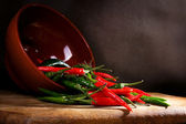 Red and green chili pepper — Stock Photo