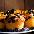 Blueberry muffins — Stock Photo #9865040