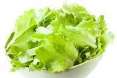 Kase yeşil salata yaprakları — Stok fotoğraf