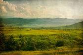 Pastoral vintage landscape — Stock Photo