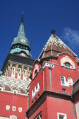 Ratusz subotica — Zdjęcie stockowe