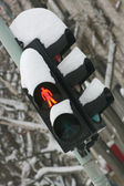 Traffic light under snow — Foto Stock