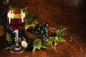 ブドウとワインのガラス — ストック写真