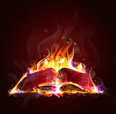 The book is on fire — Stock Vector