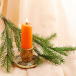 Burning candle and fir twig — Stock Photo