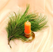 Burning candle and cedar twig — Stock Photo