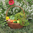 Basket with vegetables — Stock Photo