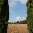Landscape of Tuscany. Italy — Stock Photo #10705122