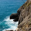 Stock Photo: Coast of Cinque Terre. Liguria