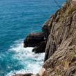 Coast of Cinque Terre. Liguria — Stock Photo