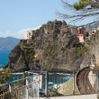 Railway station of Manarola in Cinque Terre — Stock Photo #10721100